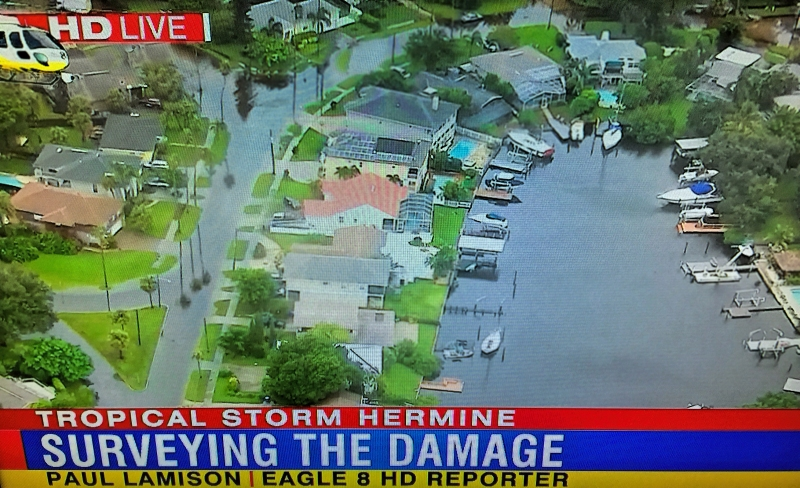 hermine damage channel 8 ud77