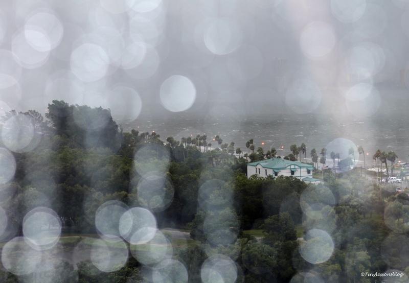 hermine on the bay rain ud77