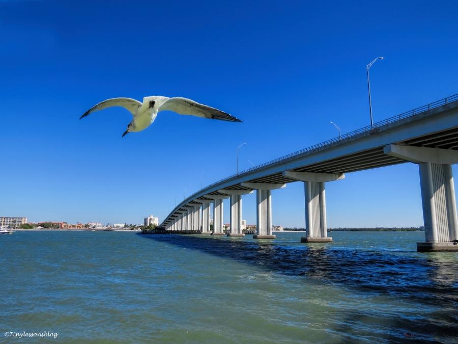 bridge-ud87