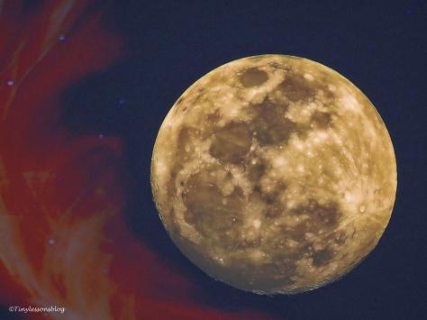 halloween-moon-3-ud88