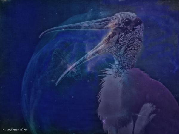 papa-wood-stork-halloween-2-ud88