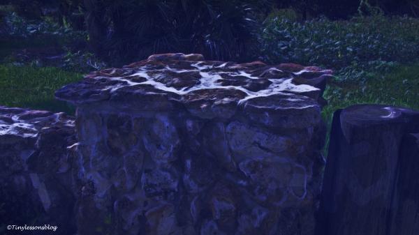 salt-marsh-stone-wall-3-ud88