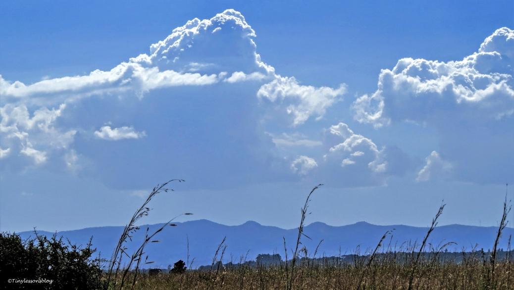 savannah-and-mountains-nos1