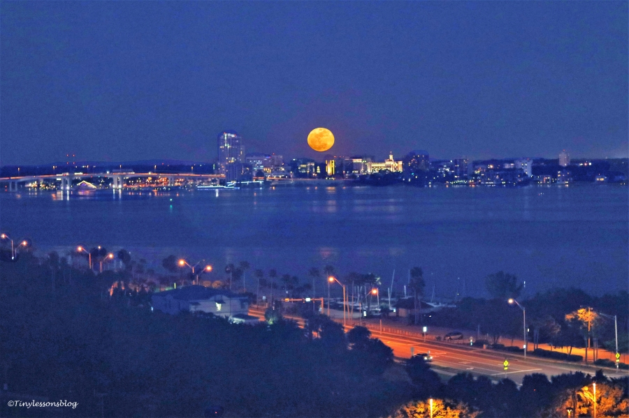 full-moon-rising-over-the-bay-ud102