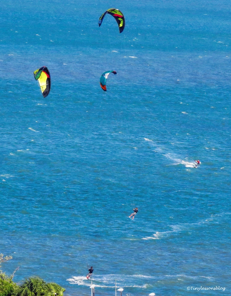 three-windsurfers-portrait-ud104