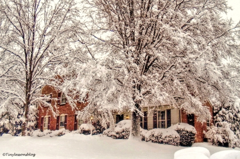 winter-snow-at-home-up-north-ud101