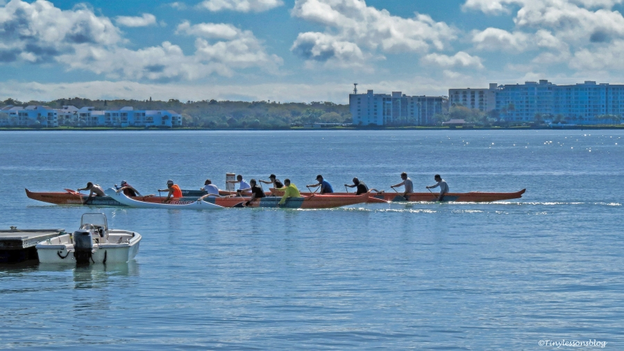 row-boat-on-the-bay-ud109