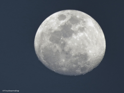 almost full moon 2 ud112