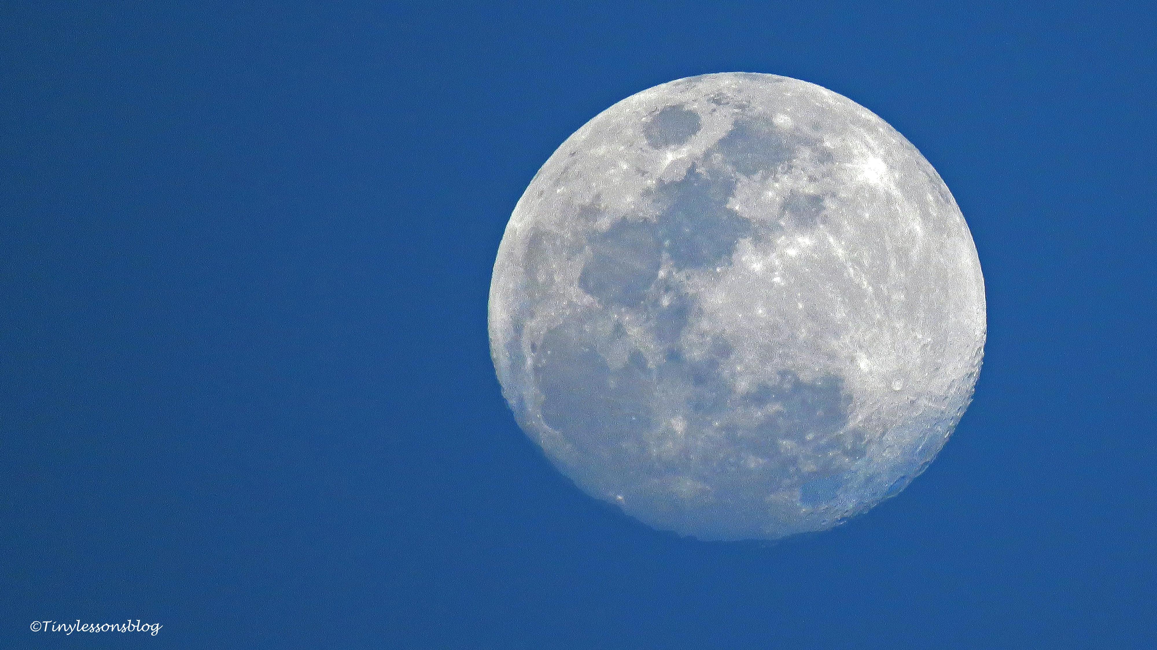 moon ud117