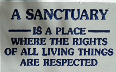 sanctuary ud121