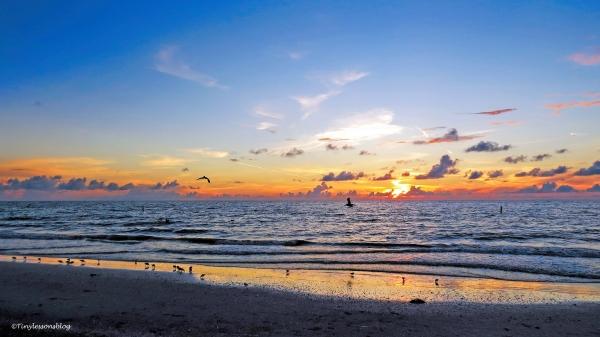 sunset 16x9 ud115.jpg