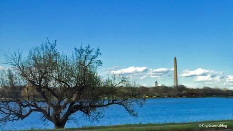 washington monument ud116