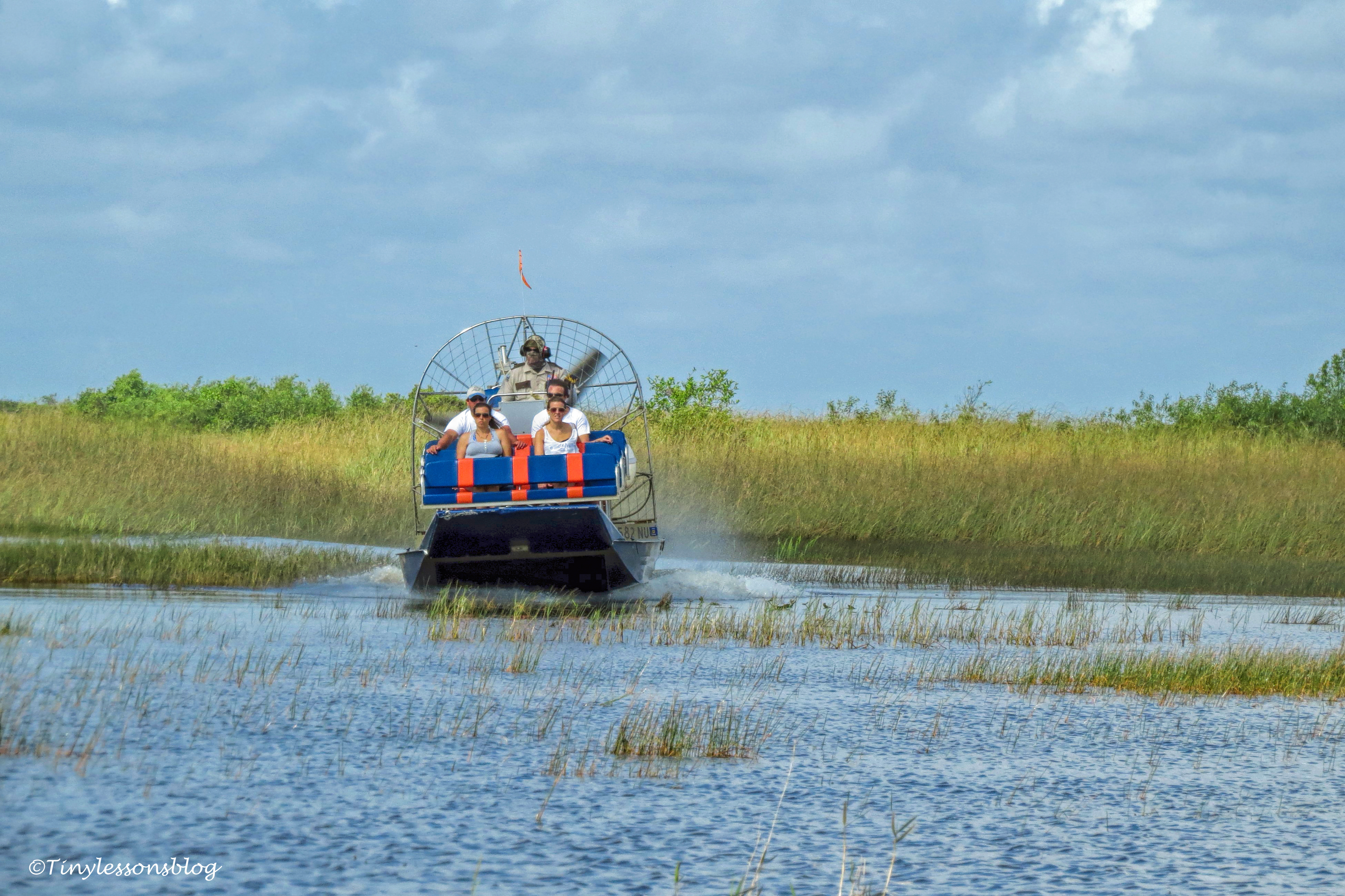 airboat in everglades ud123
