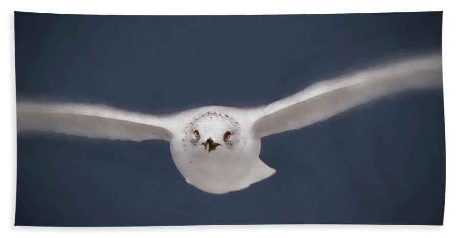 beach towel -solo-flight-a-h-kuusela