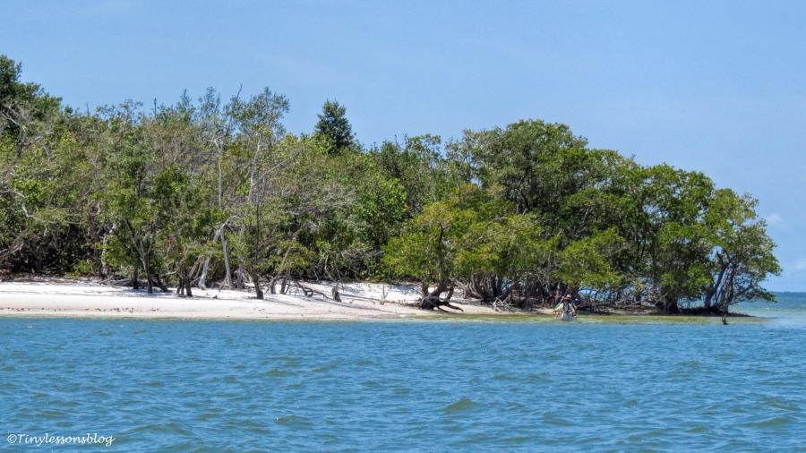 south Gulf of Mexico island ud123