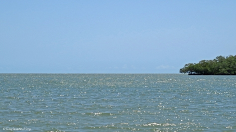 Southern Gulf of mexico ud123