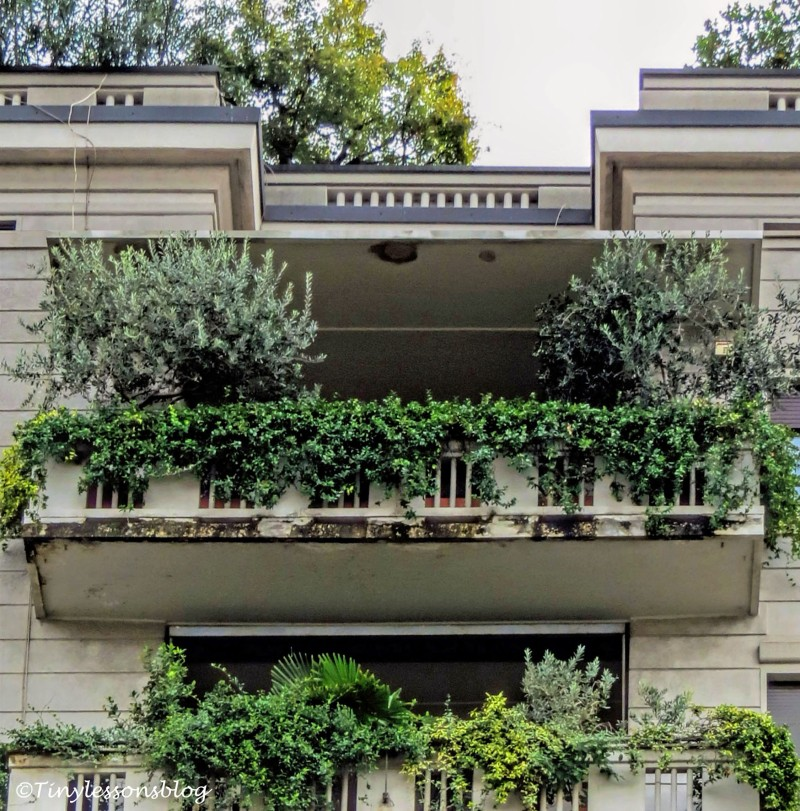 Another roof garden in Milan
