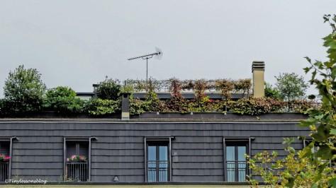 another roof garden Milan_edited-2