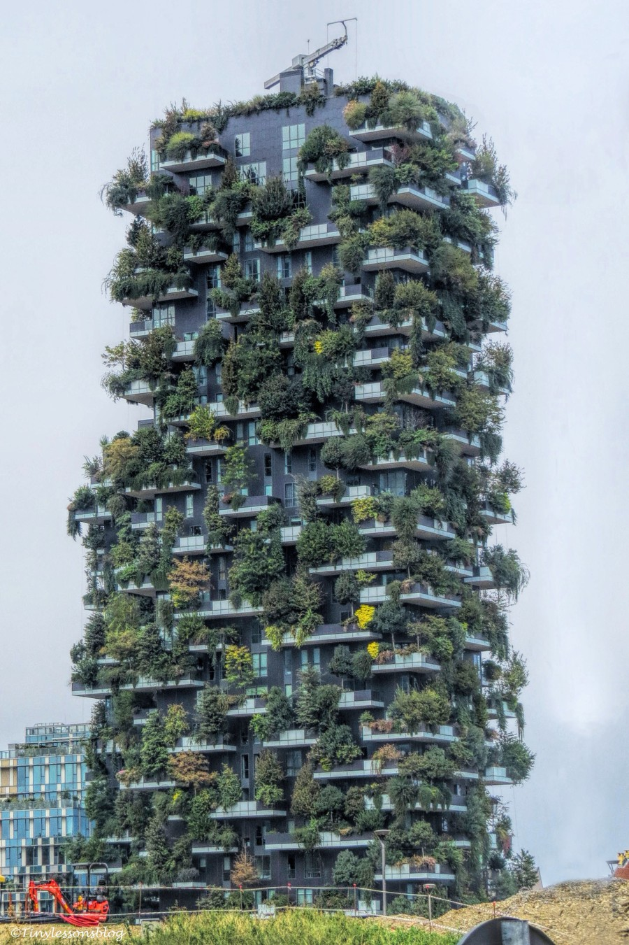 Bosco Verticale Vertical Forest in Milan_edited-1
