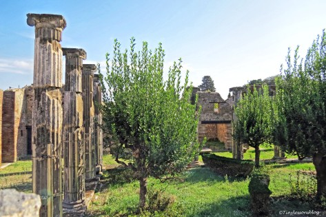garden 2 in Pompeii_edited-1