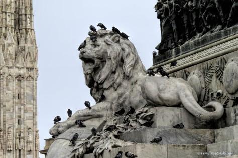 lion and pigeons at piazza del duomo Milan