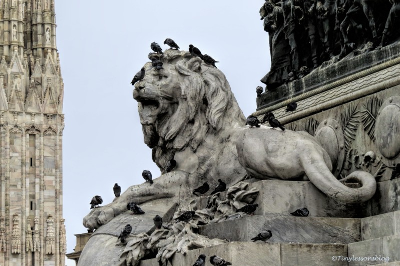 lion and pigeons at piazza del duomo Milan