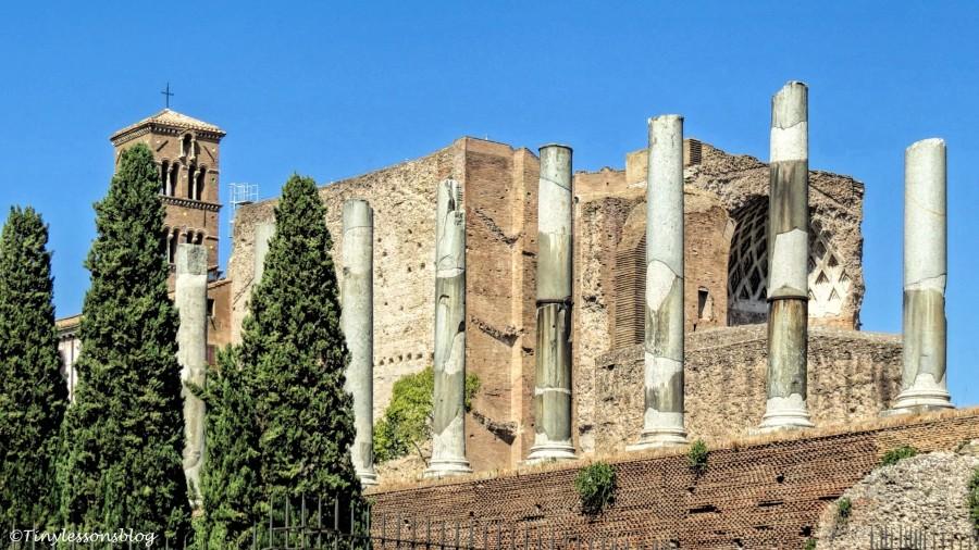 next to Colosseum Rome