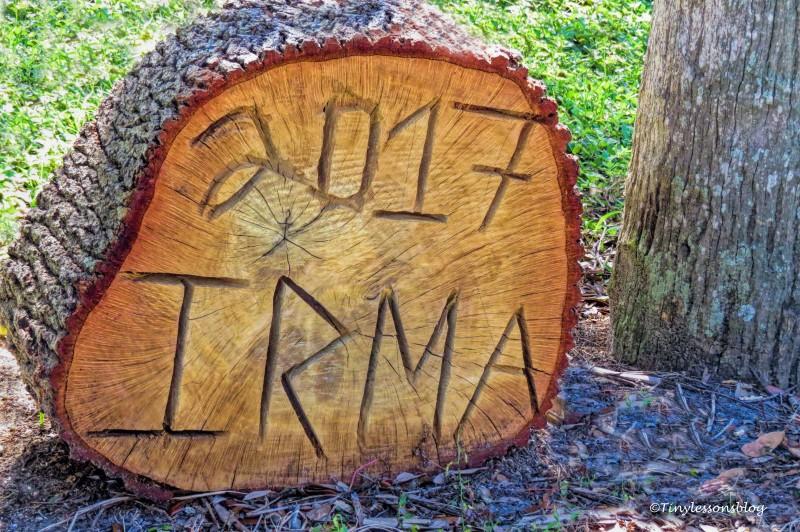 Irma 2017 ud141