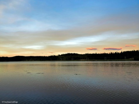 lake after sunset Finland Aug16 UD142