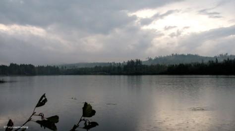 rain on the lake ud142
