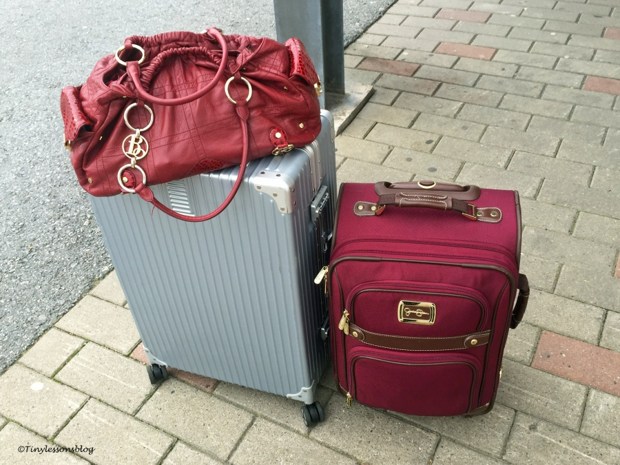 two suitcases ud142