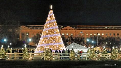 national xmas tree at night DC
