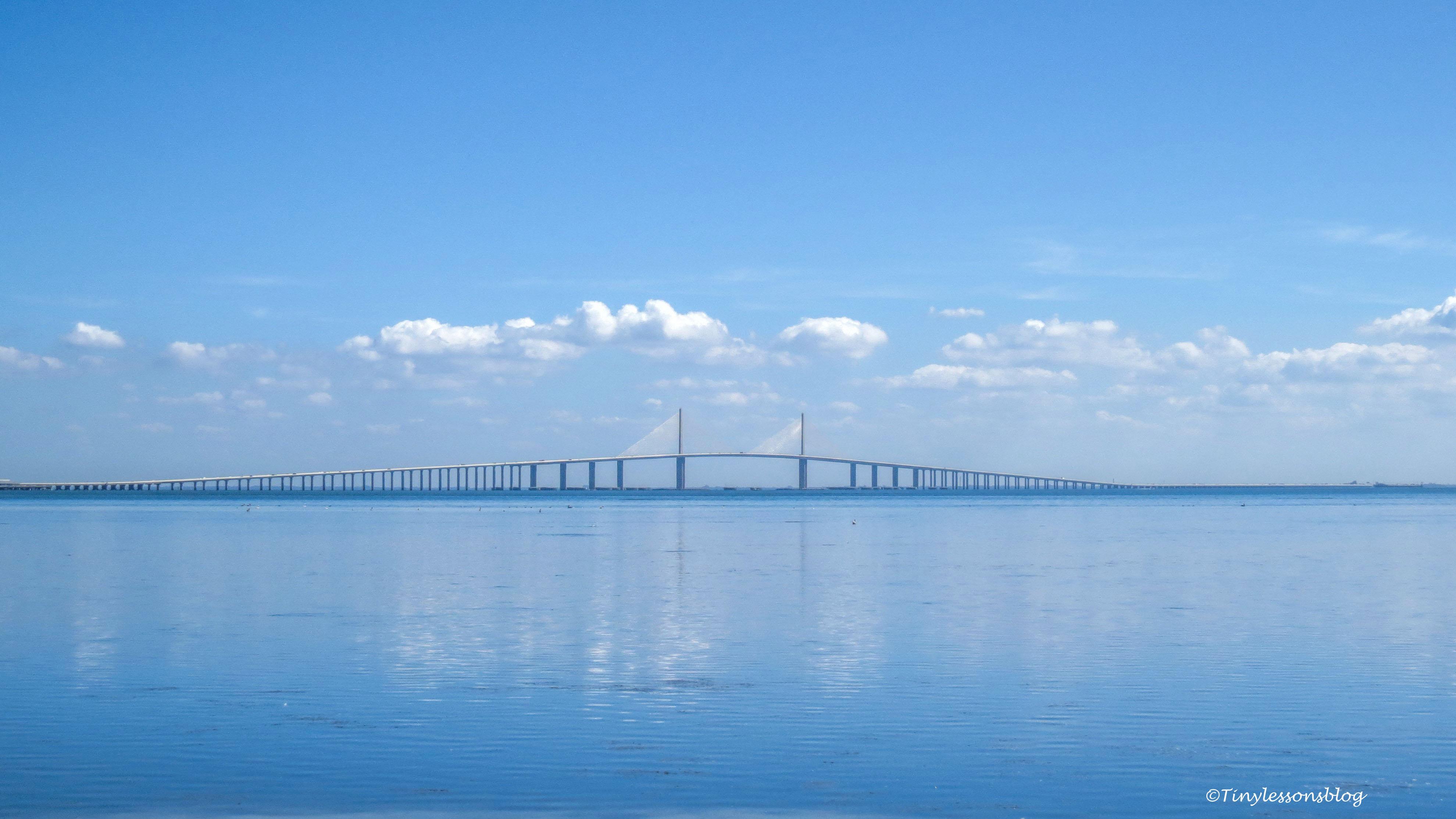 skyway bridge FDS
