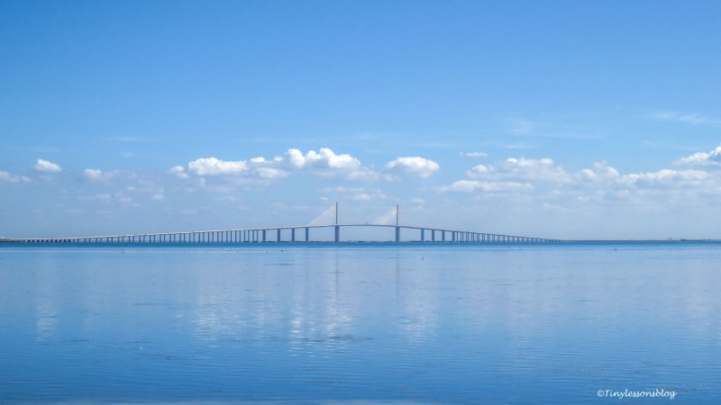 skyway bridge FDS