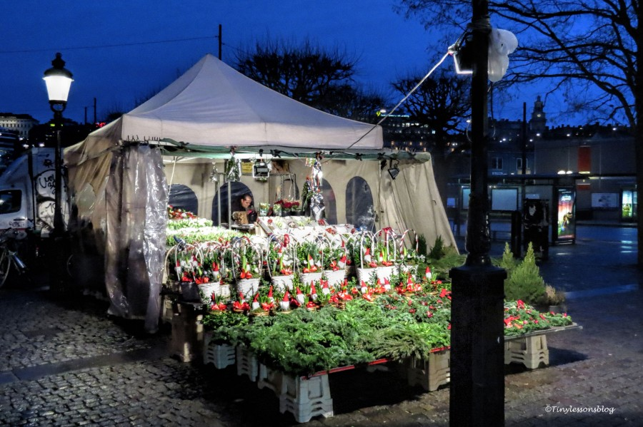 flower stall X17 UD146