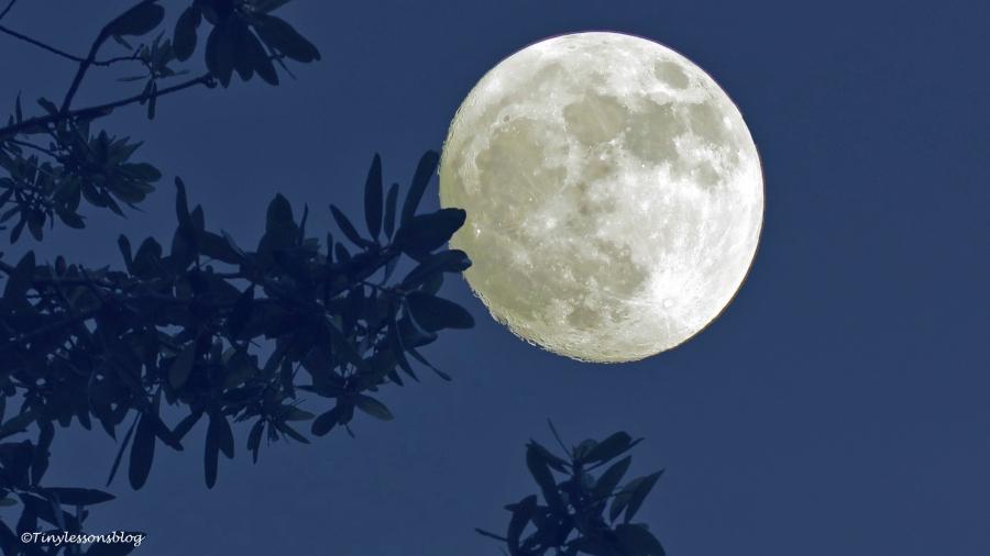 silence at night ud149_edited-1