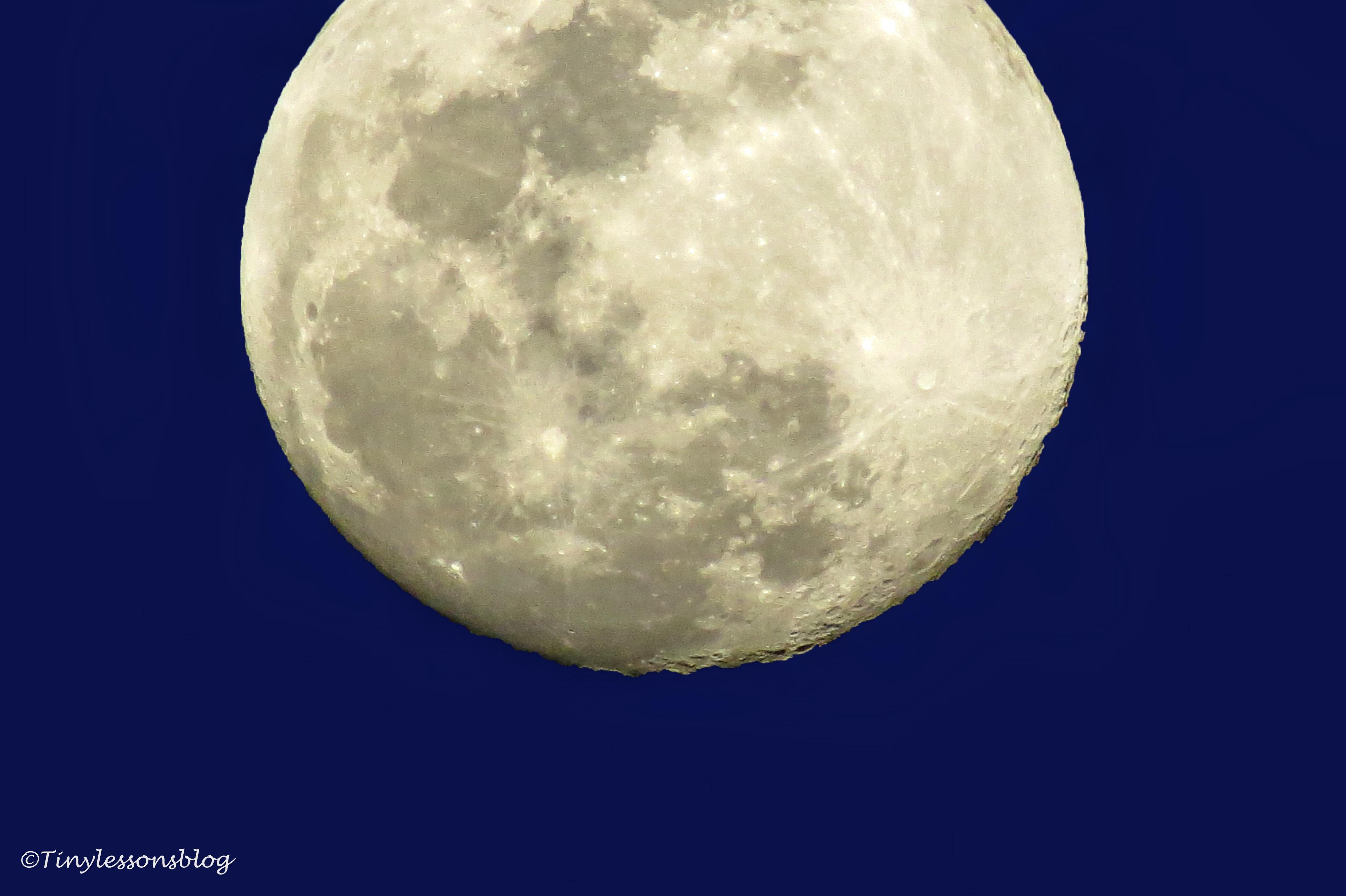 full moon ud156