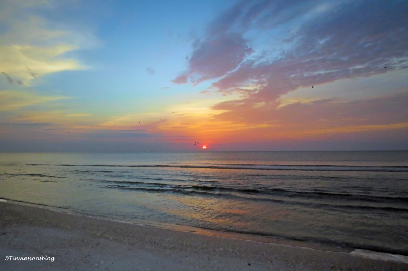 sunrise at jax beach ud163