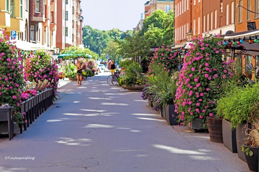 my street UD164