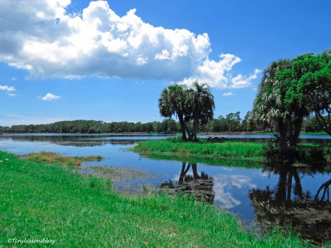 lake at Taylor Park ud170