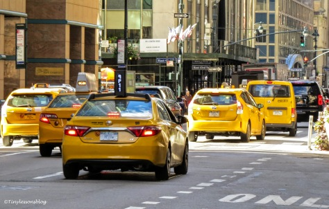 taxis ny ud170