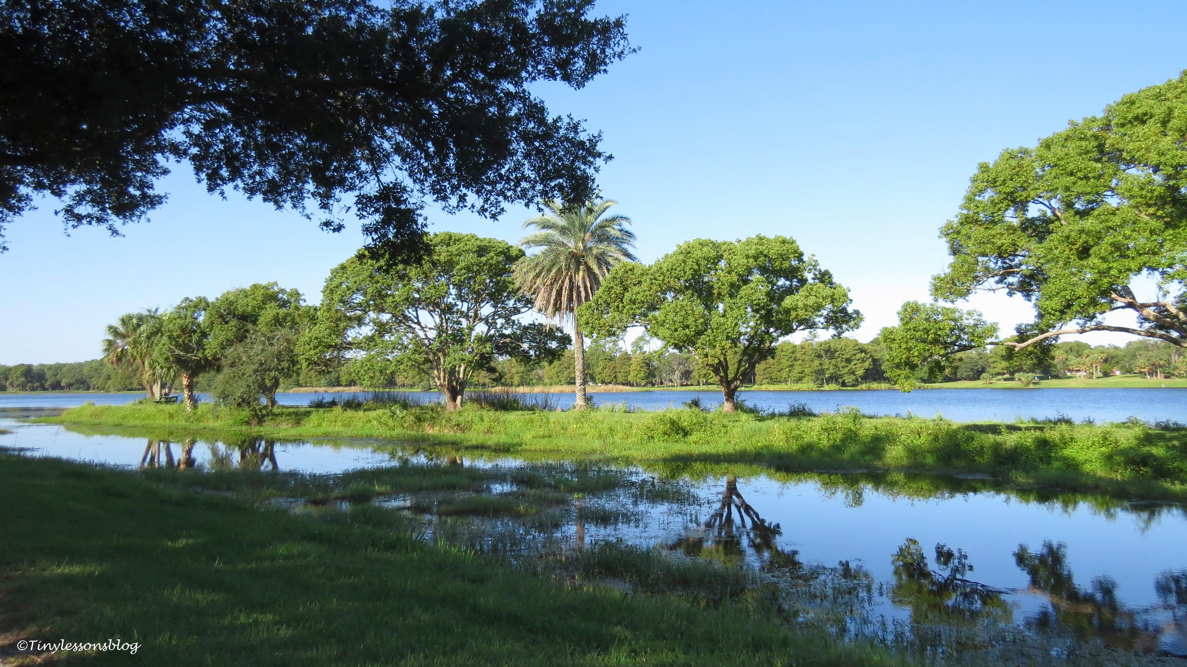 taylor park lake ud171