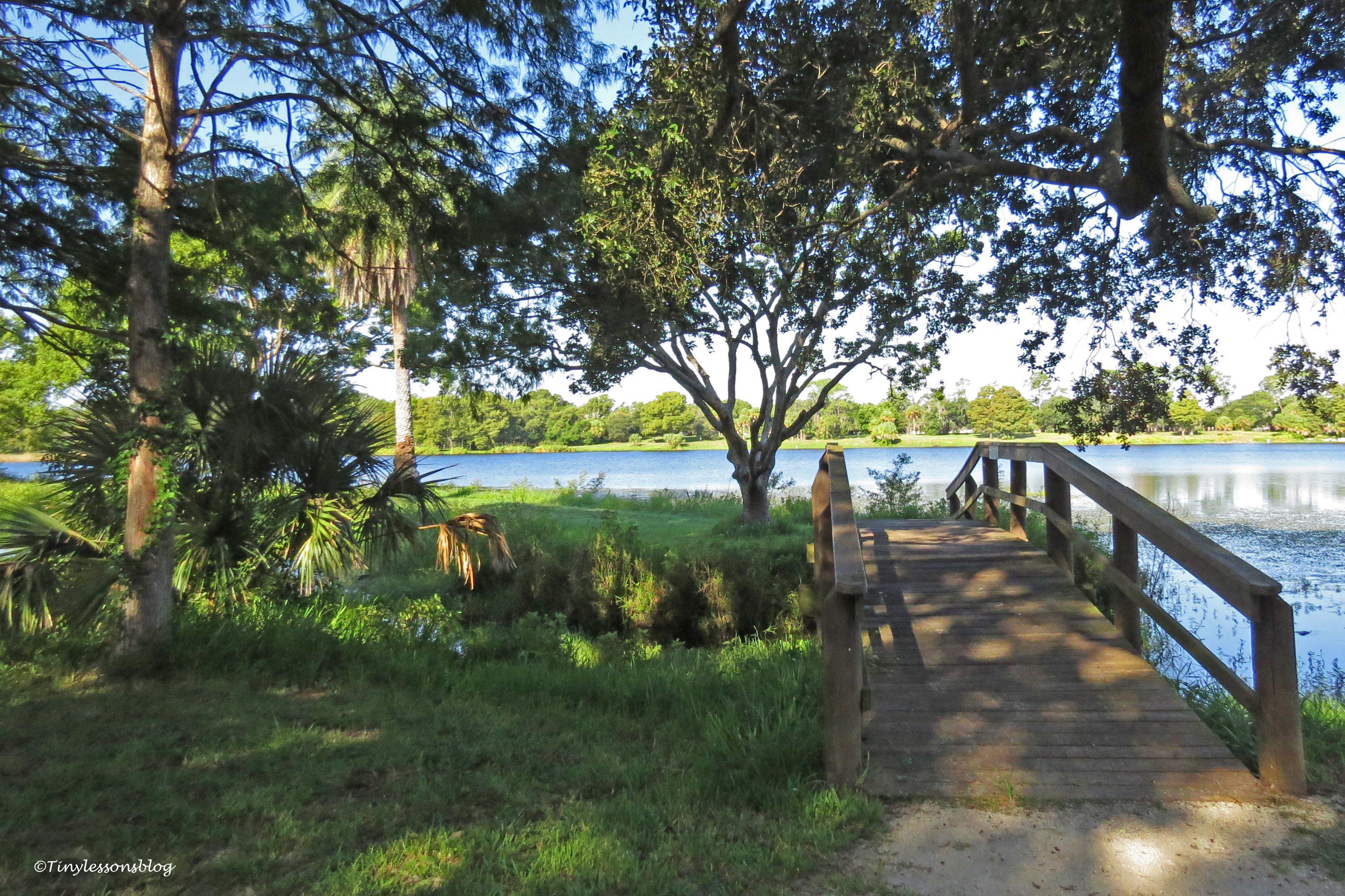 wooden bridge Taylor park ud171